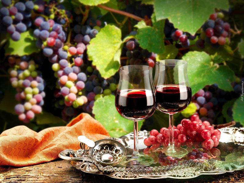 Hội chợ rượuvang