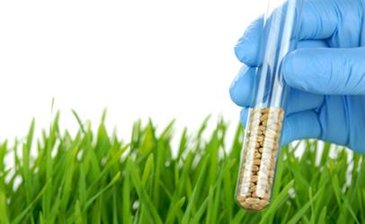 Tổng hợp các quy định của EU về dư lượng chất trong thực phẩm, vỏ bọc thực phẩm, gia vị thảo mộc có hiệu lực trong quý II2021